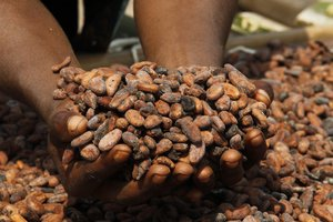 NGO-Stipendium mit Fairtrade