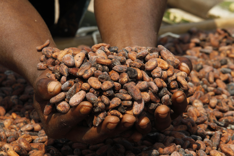 NGO-Stipendium mit Fairtrade