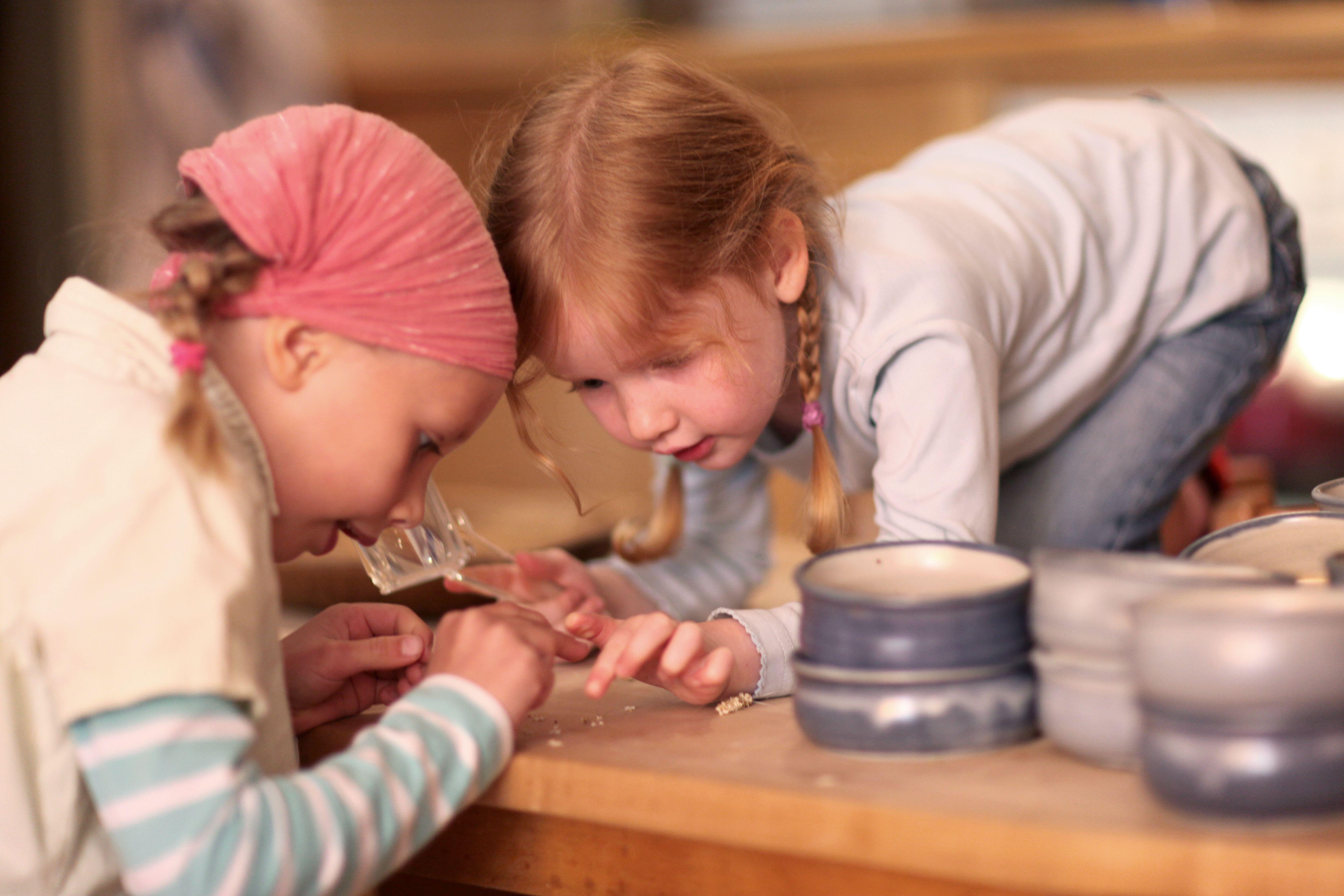 TRIALOG - Bildungsdokumentation in Waldorfkindergärten